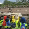 Pairi Daiza - Section Maternelle - Septembre 2015
